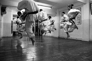 Basic Principles Underlying Karate Techniques